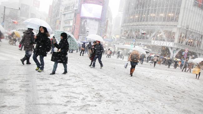 気象庁「都心の積雪は10cmまで」→13cm超えてまだ積もる  震えて眠れ