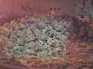 20140611鹿児島慈眼寺ふるさと考古ジオラマ2