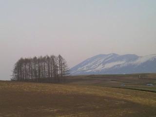 20140426パノラマカラマツ浅間山