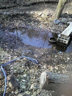 20140426山池渇水