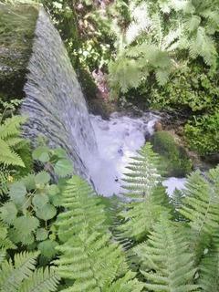 20140712白糸の滝落下