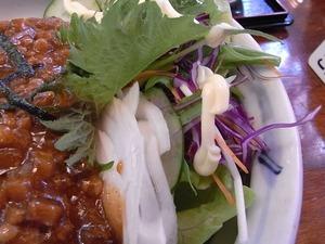 加須うどん 辻九の肉味噌うどんのサラダアップ1