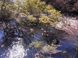 湯ノ湖のおだやかな水の流れ02