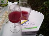 2008ココワイン収穫祭11