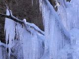 吊り橋の先から見た氷柱2