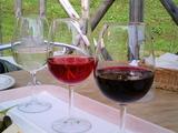 足利ココワイン02