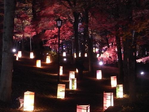 森林公園紅葉見ナイト再び