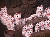 奉納された招き猫たち6