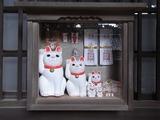 招福殿に飾られた招き猫たち