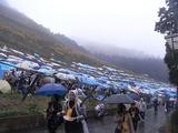 雨の収穫祭