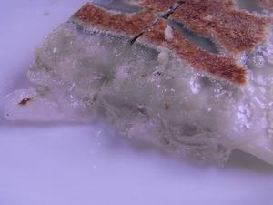 ラーメン空海 ジャンボしそ棒餃子ゼラチン質