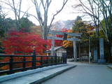 紅葉の古峰神社01