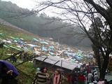 2008ココワイン収穫祭13