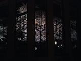 自由学園明日館の夜桜01