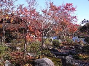 昭和記念公園の日本庭園02