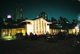 自由学園の夜桜3