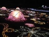 昭和記念公園28