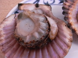 焼き上がったひおき貝のアップ