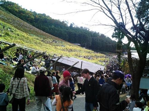 ココワイン収穫祭00