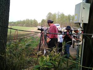 小岩井農場一本桜を撮影している人々
