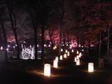 灯籠で照らされる散策路2