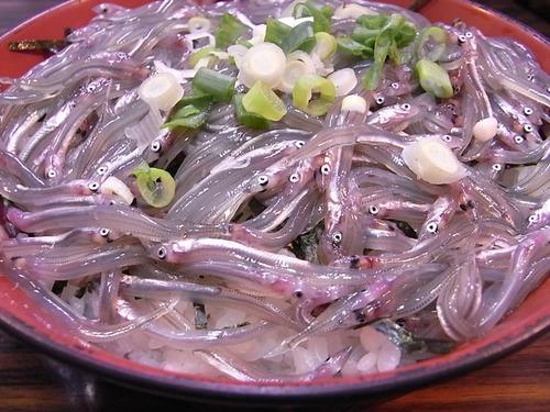 豊浜魚ひろば 小女子丼