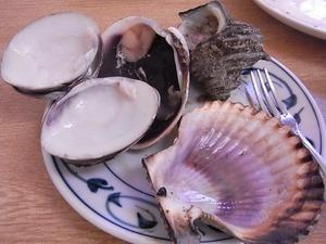 食べ終わった貝殻