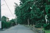 新日本三景三保の松原3