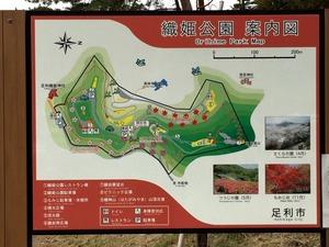 織姫公園の案内図