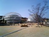 フルーツ公園1