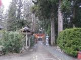 唐松神社参道