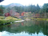 紅葉の古峰神社15