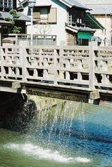 ジャージャー橋1