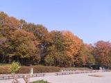 渓流広場近くの休憩所
