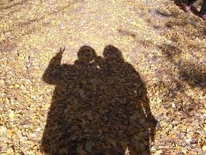 昭和記念公園の落ち葉にピース