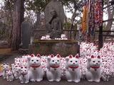 奉納された招き猫たち2