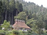 茅葺き屋根5