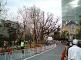 赤坂サカス26