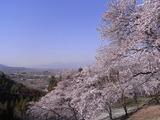 大法師公園からの眺め3