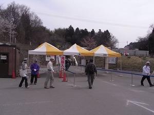 三春滝桜入口
