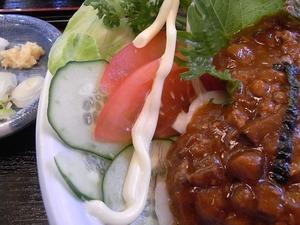 加須うどん 辻九の肉味噌うどんのサラダアップ2