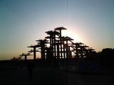 千葉県富津岬富津公園1-展望台
