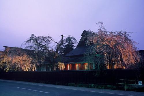 東北三大桜みちのくの小京都角館武家屋敷のしだれ桜ライトアップ