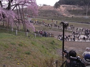 三春滝桜を撮ってる人たち5