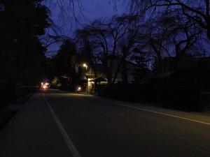 人通りも少ない日の暮れた角館武家屋敷通りと咲いていないしだれ桜2
