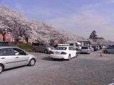 大混雑の駐車場1