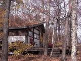 雑木林と小屋