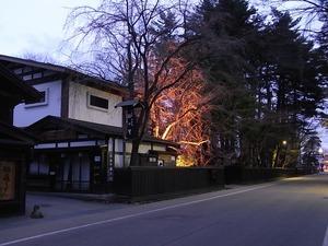 人通りも少ない夕暮れの角館武家屋敷通りと咲いていないしだれ桜3