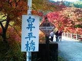 大芦渓谷の紅葉02