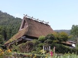 茅葺き屋根2